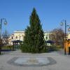 Holešovský vánoční strom a výzdoba se rozzáří 28. listopadu vpodvečer